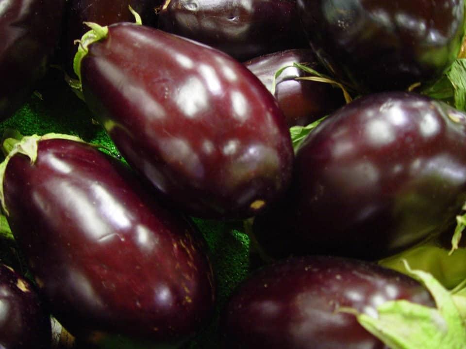 high-value vegetables -eggplant-