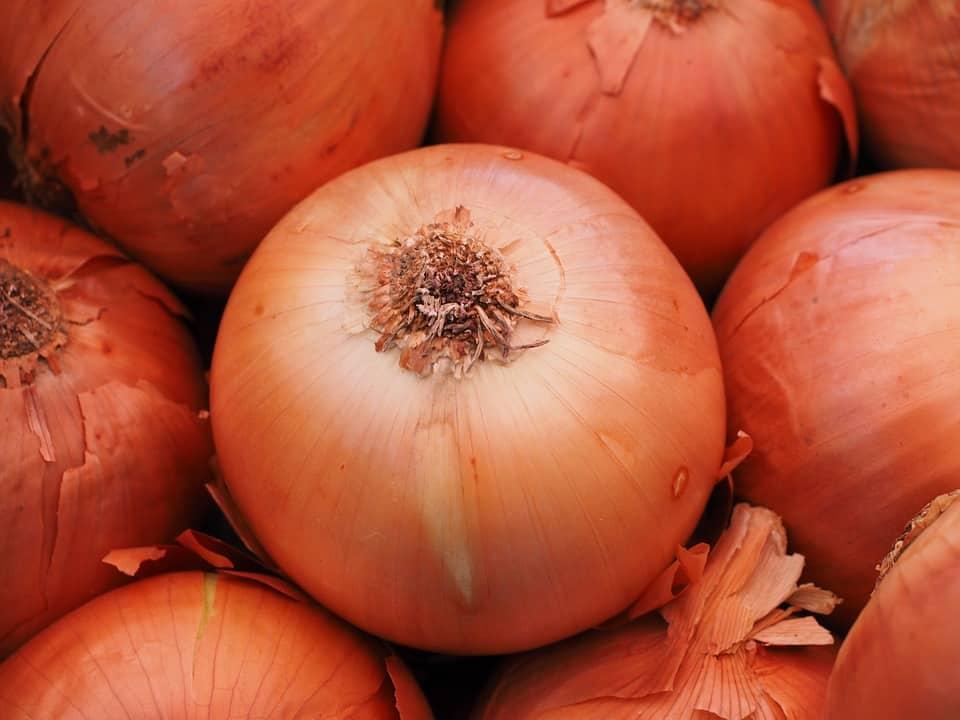 high-value vegetables-bulb onions