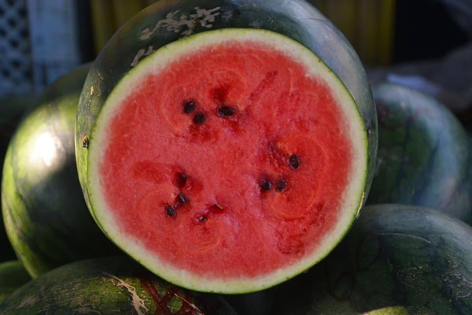 high-value vegetables-watermelon