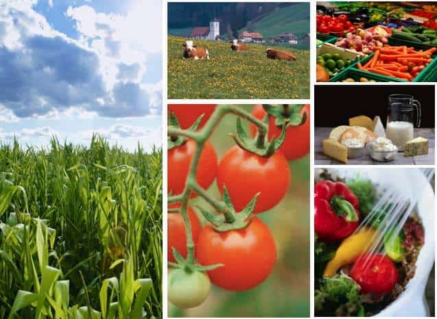 Agribusiness is diverse