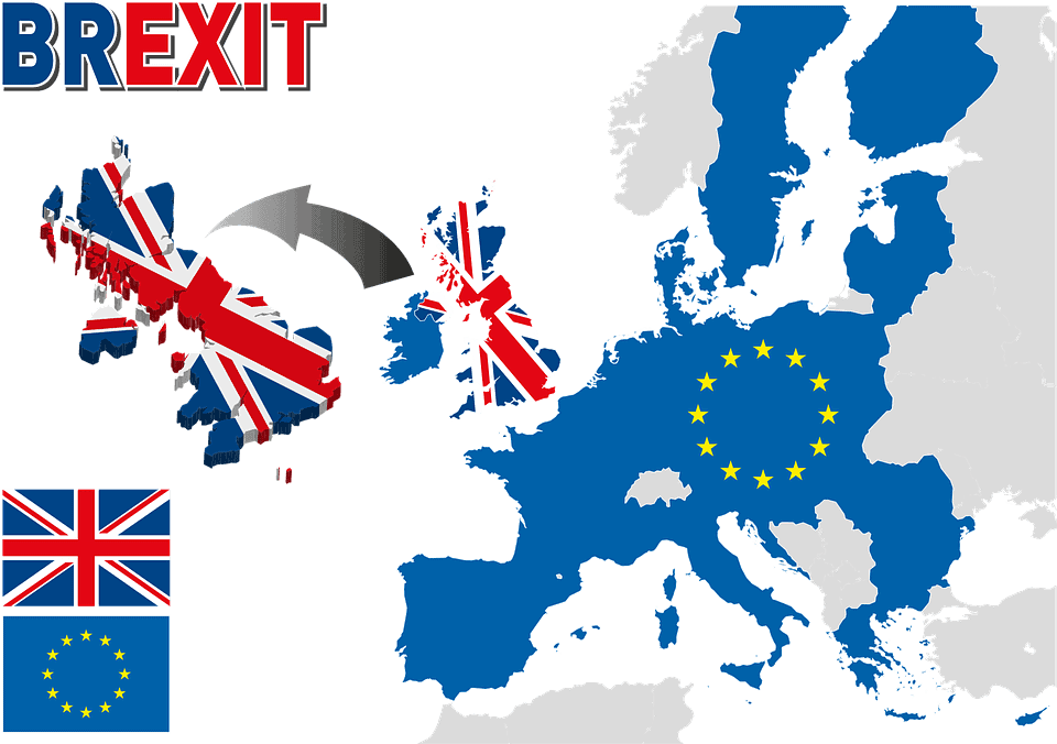 What Brexit Means to the global flower industry