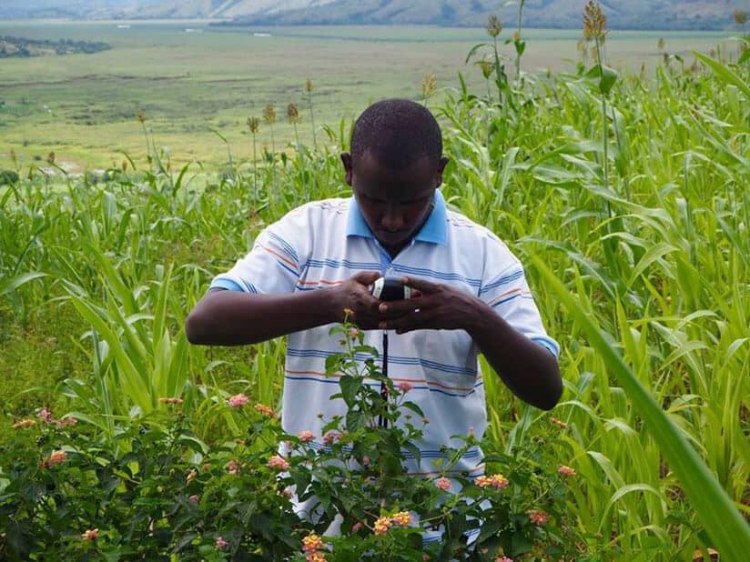 Online Farming Tools