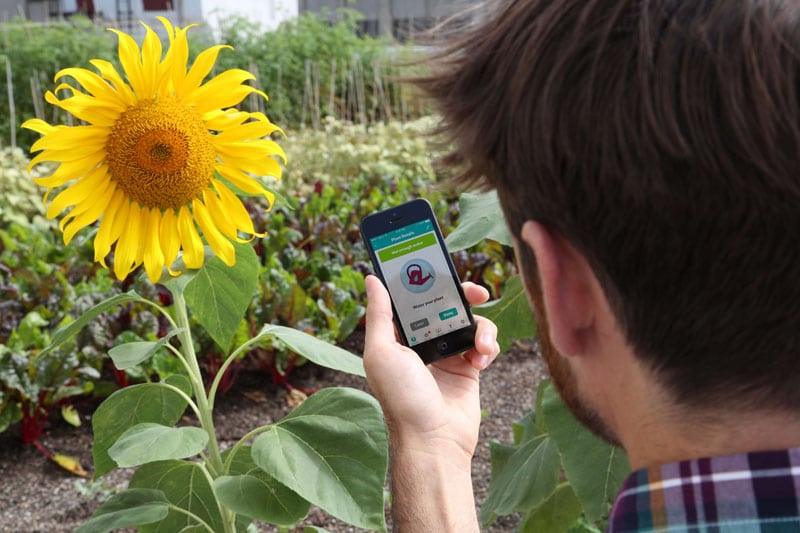 Smart Irrigation Controllers Featured