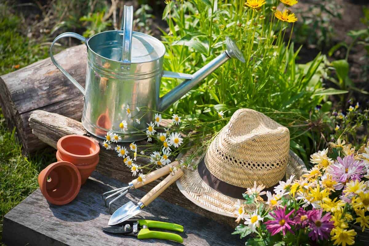 Gardening Resources and Tools Featured