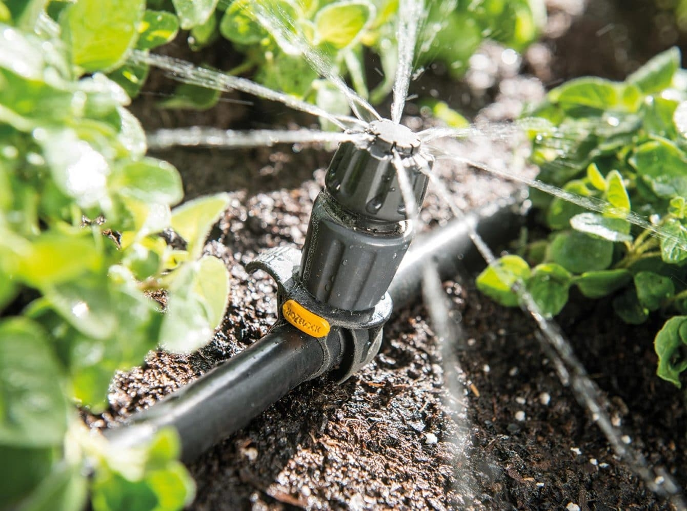 The Best Options For Automatic Plant Watering System Hort Zone