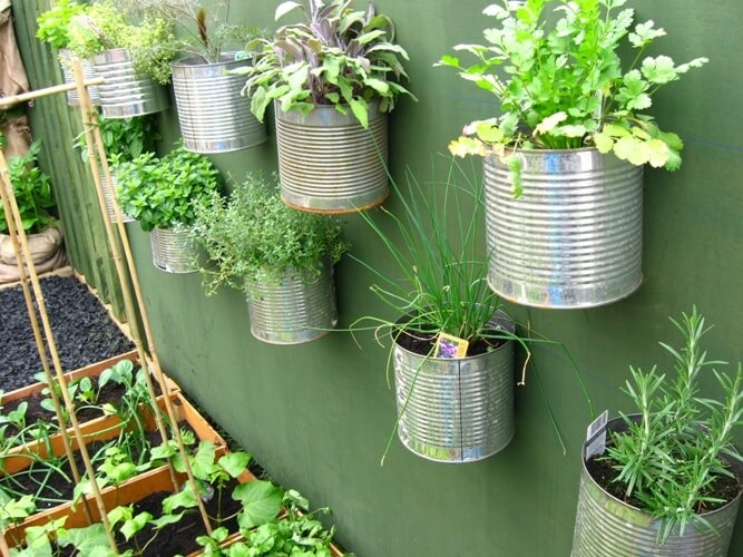 Small Space Gardening Containers