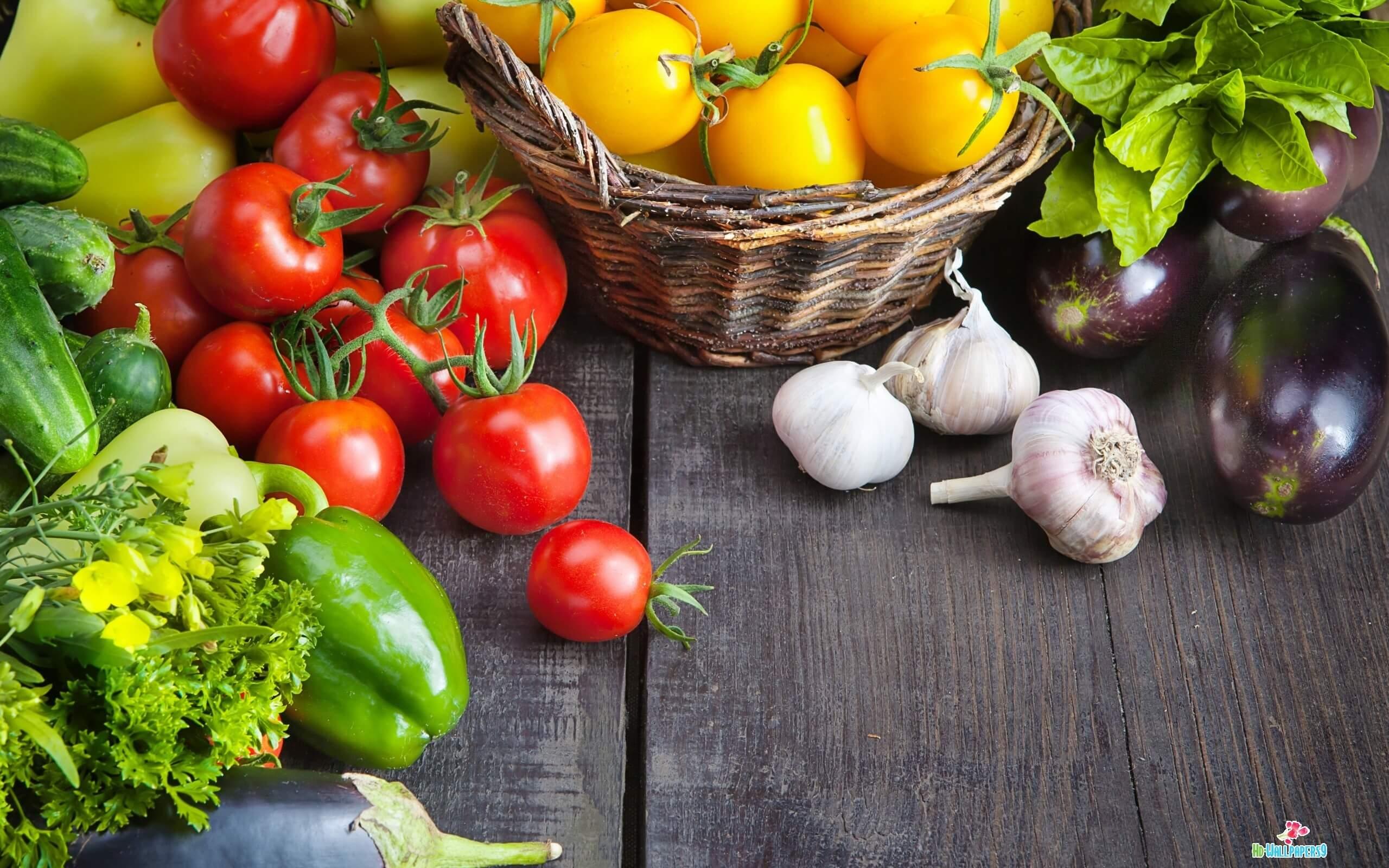 organic-farming-featured